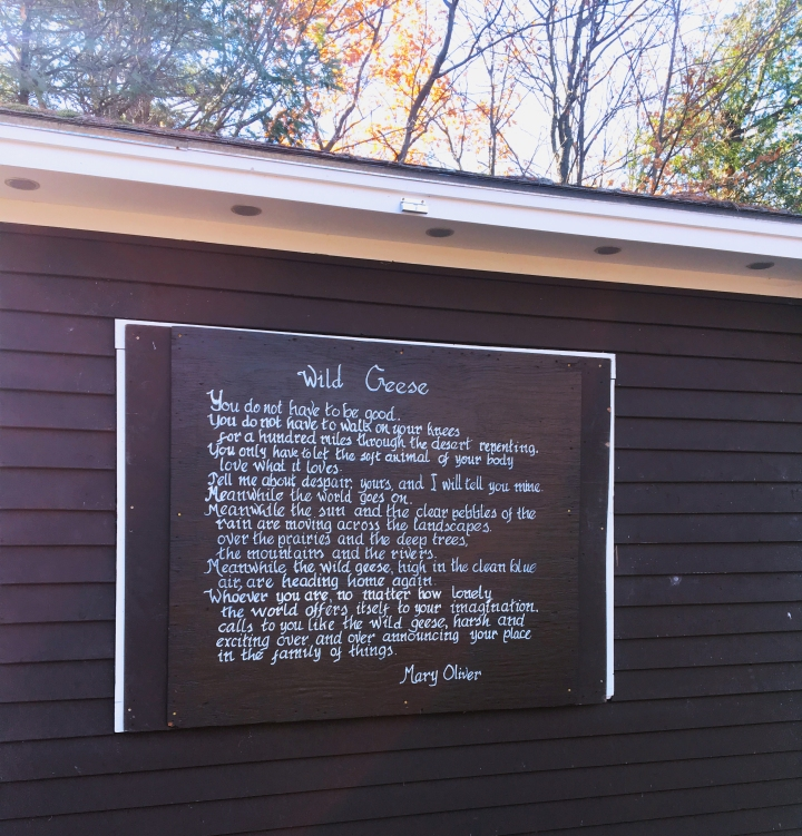 Mary Oliver's poem Wild Geese atop Mt. Philo in Vermont via FrolickingAround.com